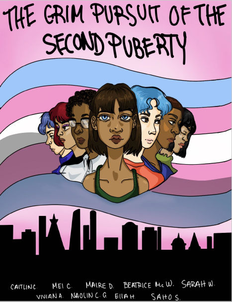 zine cover: phalanx of people holding different identities in front of a transgender flag over a cityscape