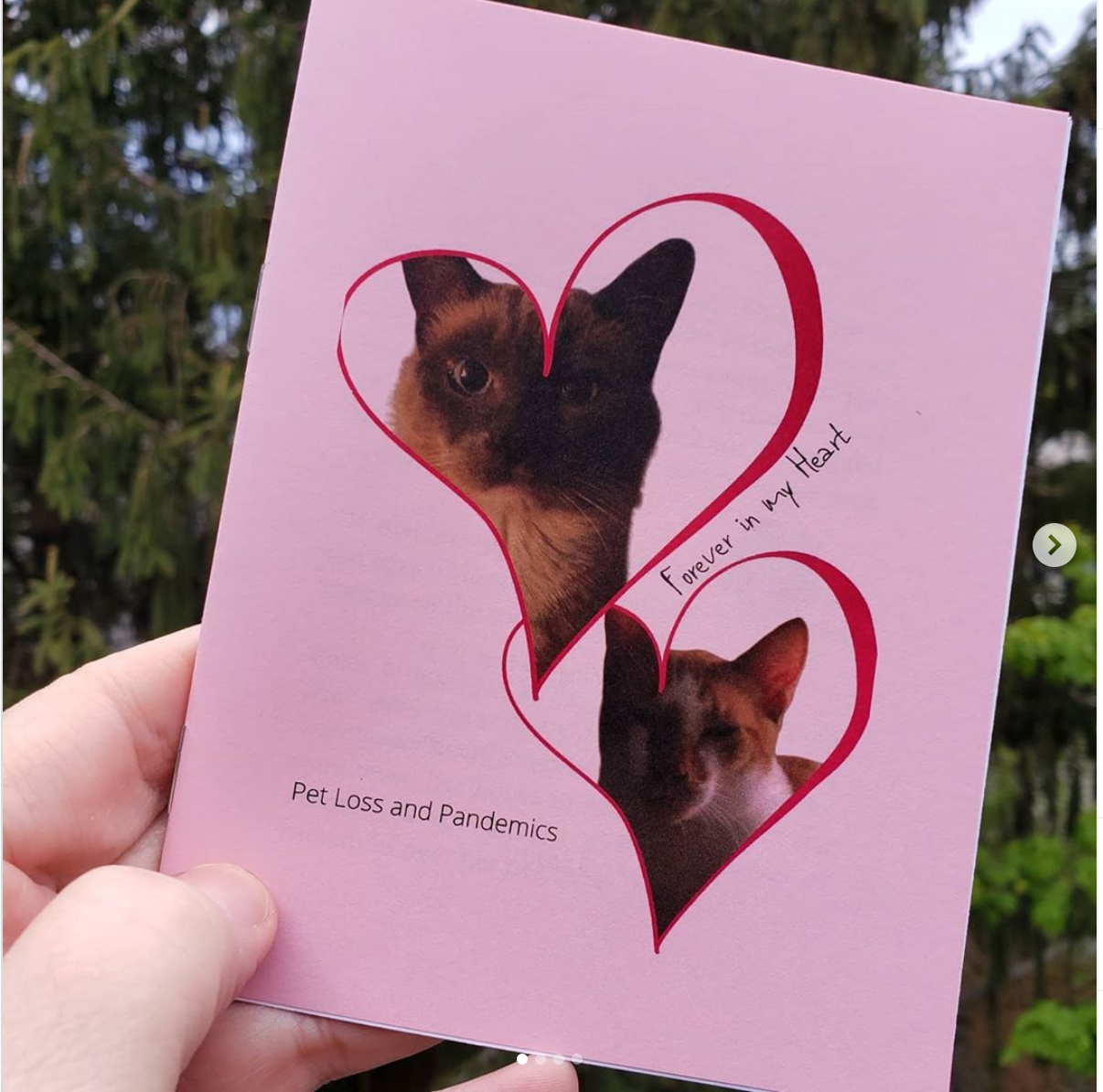 photo of person holding Forever in My Heart zine. Pink cover, photos of cats.