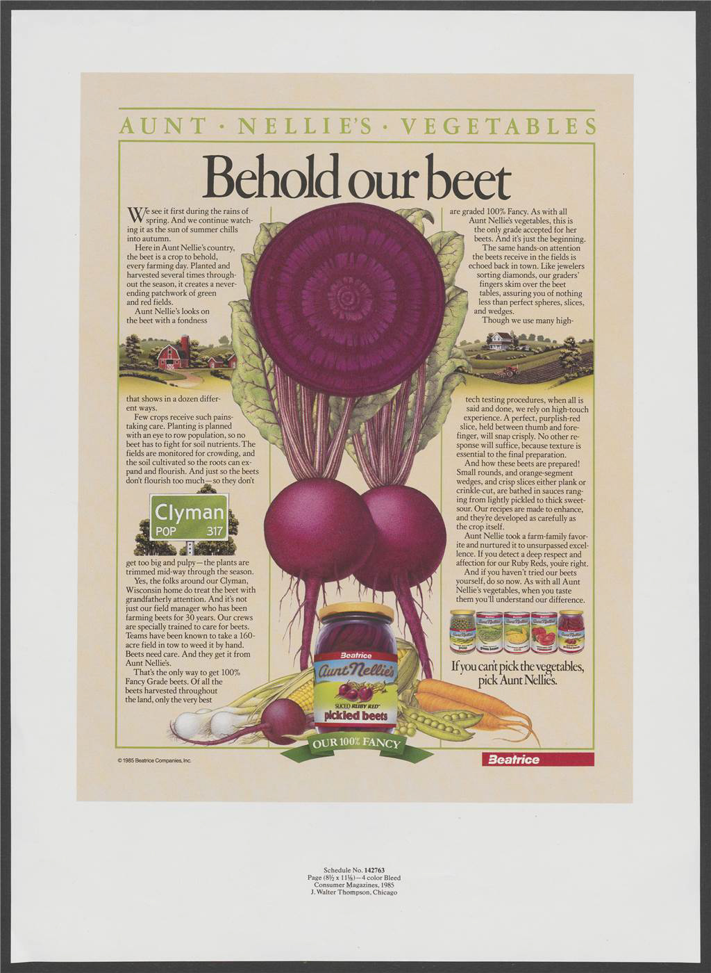 """Behold our beet"". Artwork showing cross-section of a beetroot with smaller images of jars and cans of vegetables. Text mentions the process of growing, farming, harvesting and selecting the vegetables. Discussion of quality assurance and an assurance of difference in taste."